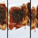 Pain grillé galicien avec tête de longe ibérique, truffe noire et EVOO, un apéritif sublime